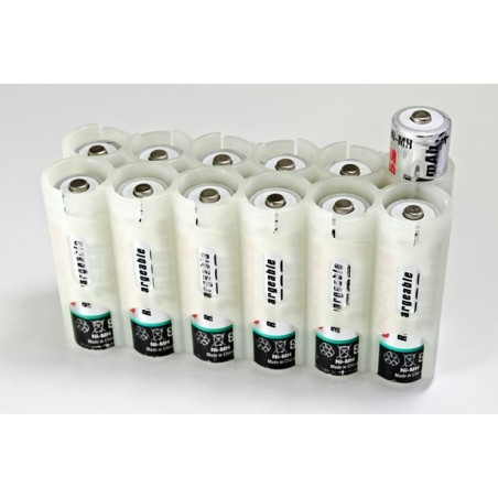 Powerpax Storacell 12AA Battery Caddy Moonshine